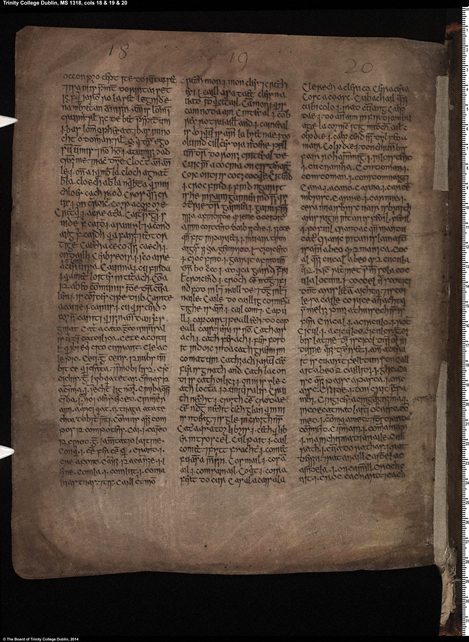 Yellow Book of Lecan (TCD, MS 1318 (H.2.16)), cols. 3–88