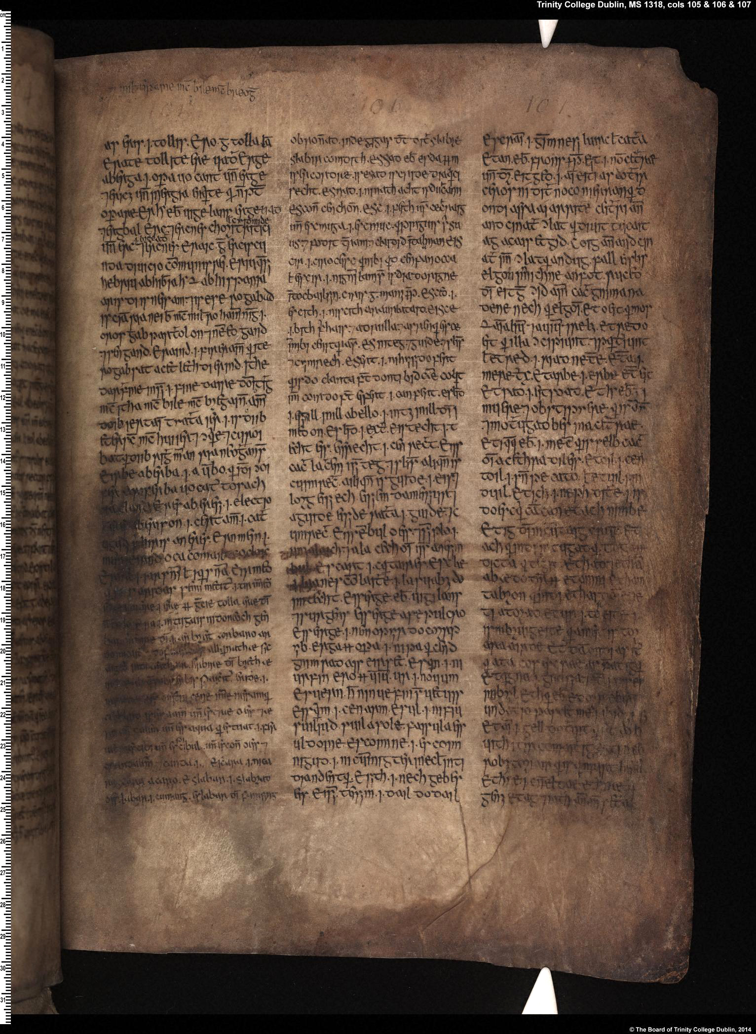 Yellow Book of Lecan (TCD, MS 1318 (H.2.16)), cols. 88–122