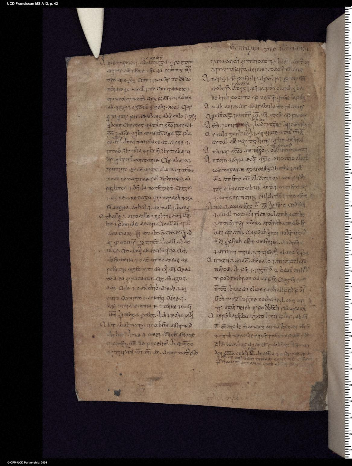 University College Dublin, Franciscan (Killiney) MS A 12, pp. 41–42